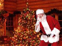 Новогодняя программа с Дедом Морозом