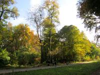 Ботанический сад в Ташкенте