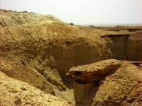 Урочище Джаракудук (Мингбулакская котловина)