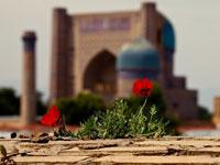 Мечеть Биби-Хоным